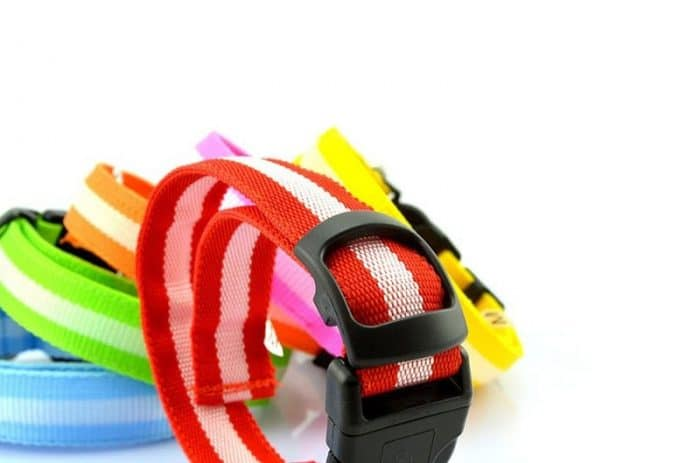 Led-Dog-Collar_IMG10