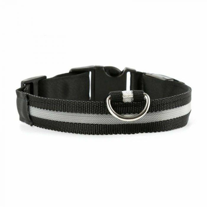 Led-Dog-Collar_IMG12