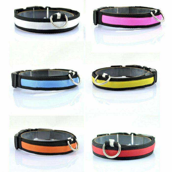 Led-Dog-Collar_IMG15 (1)